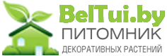 beltui.by